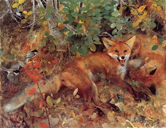 Foxes painting Bruno Liljefors